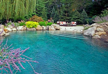 homepage_pool_5